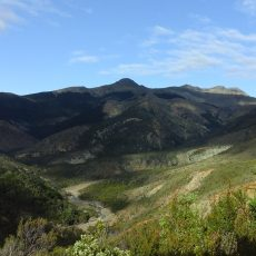 Day 64, Te Araroa Trail, New Zealand
