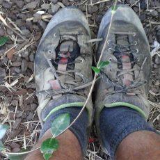 Day 82, Te Araroa Trail, 3000 Km durch Neuseeland